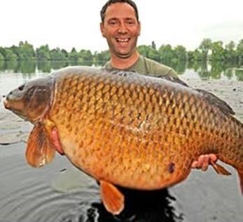 Umpan Spesial Ikan Mas Mancing Mania